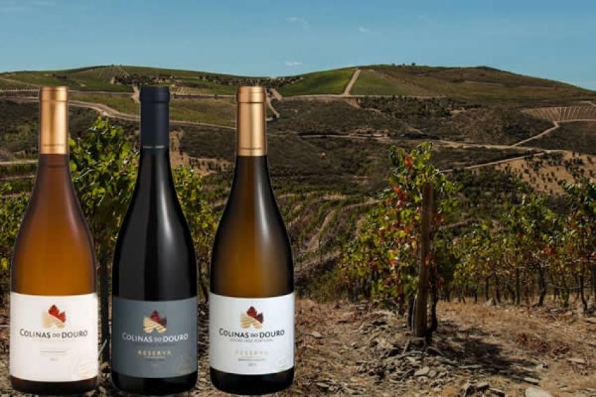 """Colinas do Douro. O projeto de vinho do sobrinho do general """"Kopelipa"""""""