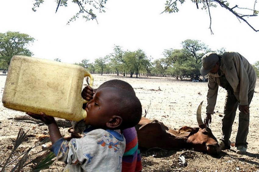 Angola procura apoios para acudir crianças vulneráveis às alterações climáticas