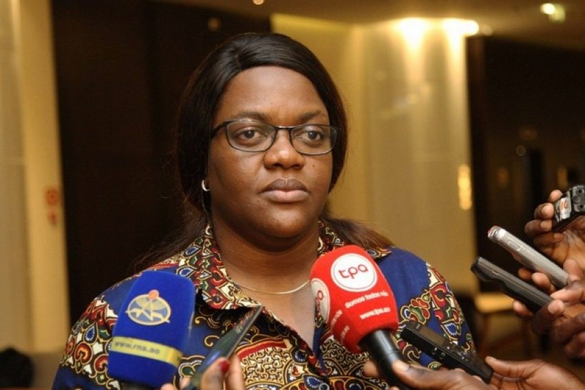 Ministério do Ambiente quer nova legislação contra crimes ambientais